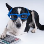 Kyle Nagy's Under-Utilized Pet Tax Deductions